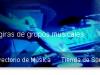 discoballs.es