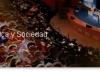 sociopolitica.com